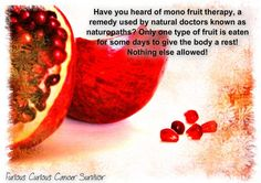mono fruit therapy used by naturopaths is originally a therapy from the ancient medicine Ayurvreda  Furious Curious