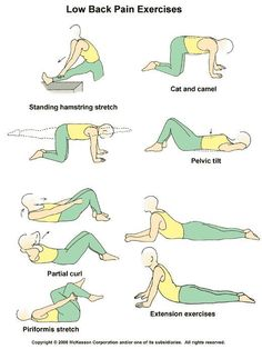 low back pain exercises