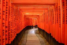 Fushimi_inari_shrine.jpg 800×533 pixels