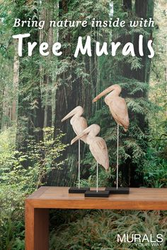 Great way to bring the outdoors into your home or office. Tree mural wallpaper is easy to install and makes a big impact. Great selection of trees including redwoods, birch, aspen, evergreen, maples, and more. #myMYWmural