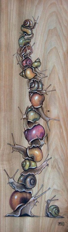 Snail Pile 03 - Pyrography, coloured pencil and pastel on wood panel x by Fay Helfer. Snail Art, Illustrations, Illustration Art, Posca Art, Pyrography, Art Inspo, Painting & Drawing, Amazing Art, Art Drawings