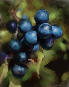 Berries Study by on DeviantArt Black Grapes, Best Water Bottle, Freelance Illustrator, Painting & Drawing, Berries, Interview, Deviantart, Brown, Illustration