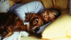 Bild:The Chart - CNN.com  Selbst die grössten Hundeliebhaber könnten mit diesem Thema nicht einverstanden sein. Lässt du deinen Hund bei dir im Bett schlafen in der Nacht? Laut einer vor kurzem durchgeführten Umfrage von American Pet Products Association, erlaubt fast die Hälfte aller Haustierelt