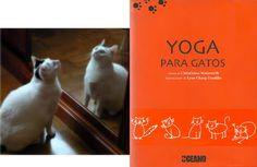 Yoga para gatos de Christinne Wadsworth
