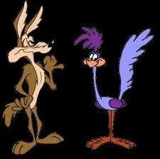 Wile E Coyote & Roadrunner