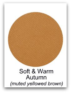 Soft and warm autumn-muted yellowed brown