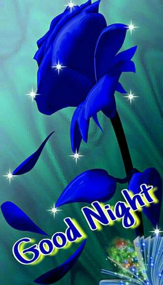 good night wishes images photo Good Night Flowers, Good Night Prayer, Cute Good Night, Good Night Blessings, Good Night Sweet Dreams, Good Morning Good Night, Good Night Greetings, Good Night Messages, Good Night Quotes