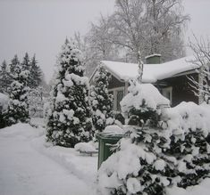 My Chocolate brown home in winter