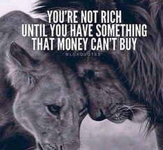 Wisdom Sayings & Quotes QUOTATION – Image : Quotes Of the day – Description You're not rich until you have something that money can't buy Sharing is Caring – Don't forget to share this quote with those Who Matter ! Positive Quotes, Motivational Quotes, Inspirational Quotes, Positive Mind, Positive Vibes, Aigle Animal, Lion Quotes, Animal Quotes, Money Cant Buy