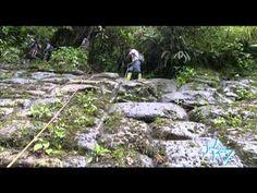 Las leyendas locales, transmitidas de generación en generación, que hablan del tesoro del Inca Atahualpa escondido en las montañas de Llanganates y de antiguos seres gigantes, fueron con el tiempo olvidadas en el silencio de la inhóspita extensión selvática.