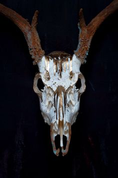 Drip // Painted 8 point Whitetail Deer Skull // Gold by MyrandaE