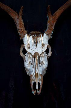 Drip // Painted 8 point Whitetail Deer Skull // Gold by MyrandaE
