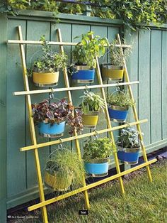 VERTICAL herb GARDEN! Hang buckets with 'S' hooks & grow your FAVORITES!