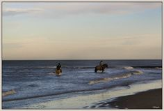 Nature in Bredene-aan-Zee, Belgium (month december our north sea) - a photo by magda 1980