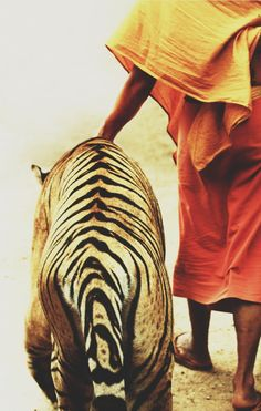 Monk and Tiger with stripes