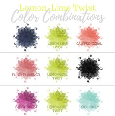 Stampin Up 2017-2019 In Color Inspirations with Valerie Martin Lemon Lime Twist