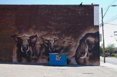 elephant_street_art_canada_2  Photos by Lynda Murtha. Taken in Toronto, Canada.
