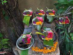 Yoga in Canggu, Bali - 4 Hot Spots für deine nächste Traumreise   Normalerweise liest du hier meine Erfahrungen über die Selbstständigkeit als Yogalehrerin. Aber da meine Reise nach Bali kurz bevorsteht, über die ich mich schon freue, wie ein kleines Kind, und da es nicht unwahrscheinlich ist, dass du als Yogi auch bald an diesem Yoga Hot Spot landen wirst, möchte ich heute meine Lieblings-Yogaorte in Canggu mit dir teilen.