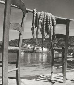 Herbert LIST :: Octopus drying at sun / Ionian island of Corfu, Greece, 1938