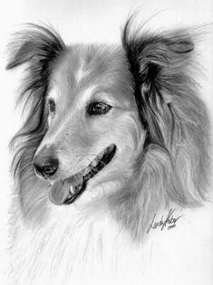 Dibujos de animales a lápiz (13)