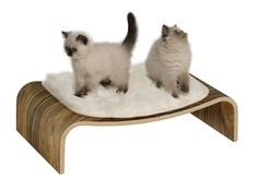 VESPER Cat Furniture V-lounge Walnut Elevated Bed Modern Faux Fur for sale online Furniture Scratches, Dog Furniture, Cat Tree Condo, Cat Condo, Contemporary Cat Furniture, Vesper Cat Furniture, Elevated Bed, Son Chat, Lounge