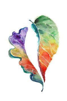 Leaves Watercolor Painting Art Print, Oak and Linden Leaves, Abstract Watercolor Modern Art
