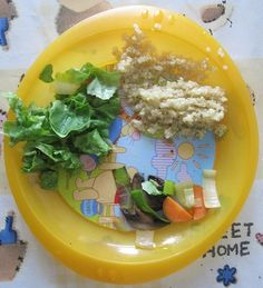 Baby-Led Weaning for the Mini Vegan | The Vegan Woman