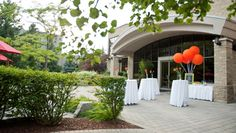 White Oaks is the perfect venue for a wedding in Niagara. Attentive wedding specialists and elegant, private settings ensure a dream wedding in Niagara. Outdoor Lounge, Dream Wedding, Reception, Indoor, Gta, Plants, Interior, Receptions, Plant
