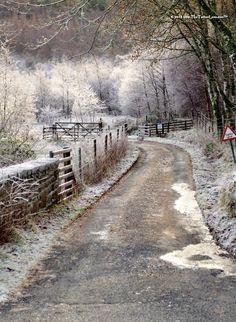 back road in Scotland