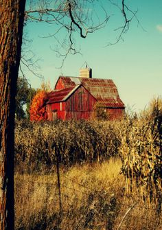 "Red barn.    "":O)"