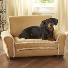 FREE SHIPPING! Shop Wayfair for Enchanted Home Pet Ultra Plush Club Dog Sofa - Great Deals on all Pets products with the best selection to choose from!