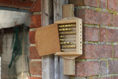 Bee box photo - WP33057