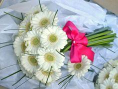 Google Image Result for http://3.bp.blogspot.com/-CFWOG33kycM/TzqsbsYJZUI/AAAAAAAABVE/yvHw4b5nVt8/s1600/ivory-gerbera-bouquet-grass.jpg