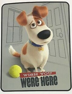 """The Secret Life of Pets plush throw blanket, new with tags; Has Max the dog - """"Wish you were here""""; Disney Descendants 2, Palace Pets, Cape Girardeau, Secret Life Of Pets, Wish You Are Here, Cuddling, The Secret, Corgi, Plush"""
