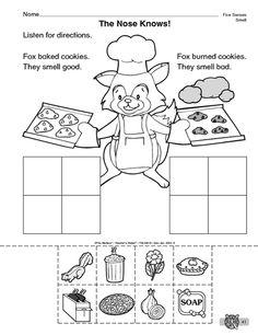 Sense Of Smell Worksheet 5 senses on pinterest 5 senses activities ...