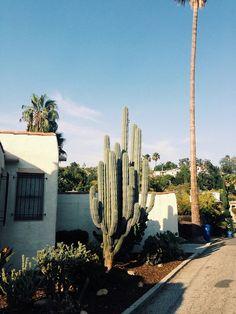 Desert Exterior