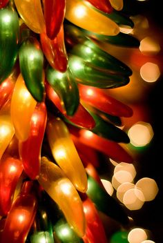 Chili pepper lights for chili cook-off party Christmas Lights, Christmas Holidays, Christmas Decorations, Xmas, Christmas Photos, Christmas Ornaments, Southwest Decor, Southwest Style, Mexico Christmas