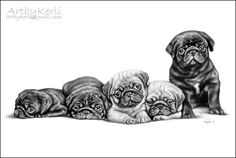 The pug litter, pencil drawing (A3). Art by Kerli, 2013.