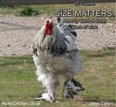 Of course Size Matters. Nobody wants a small glass of wine.