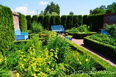 Spotkanie w ogrodach Kapias 14.06.2015 - strona 4 - Forum ogrodnicze - Ogrodowisko