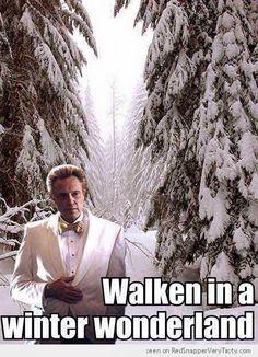 Walken in a winter wonderland :)        ...favorite re-pin every year!