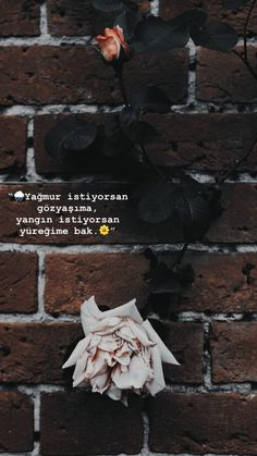 Sad Love Quotes, Book Quotes, Urdu Love Words, My Philosophy, Story Video, Flower Wallpaper, Carpe Diem, Cool Words, Instagram Story