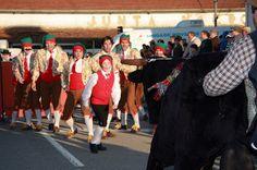 o fio dos dias: [726.] - Rescaldo do 2.º dia de Carnaval