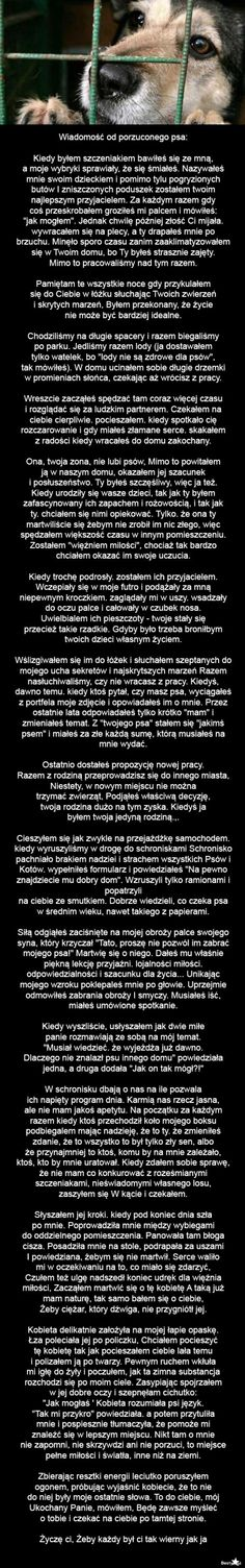Czlowiek to bestia Save Life, Animals And Pets, Sad, Words, Quotes, Magic, Pets, Quotations, Quote