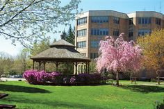 ArchCare at Ferncliff Opens Center For Neurodegenerative Care in Rhinebeck - Hudson Valley Magazine - May 2016 - Poughkeepsie, NY