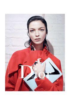 Campañas publicitarias moda otoño invierno 2013 2014 - mariacarla boscono - dior - willy vanderperre