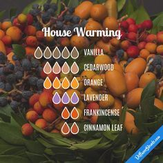 House Warming — Essential Oil Diffuser Blend