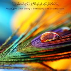 Nothing is hidden from Allah.