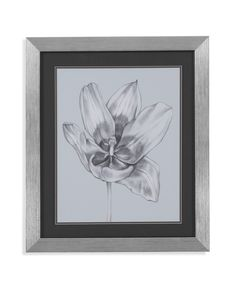 Silvery Blue Tulips II Framed Graphic Art