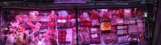 Esta fue la sección de carne en el Mercado Central. La carne parecía muy fresca y muy rojo. Algunas personas no les gusta la carne, pero me encanta.